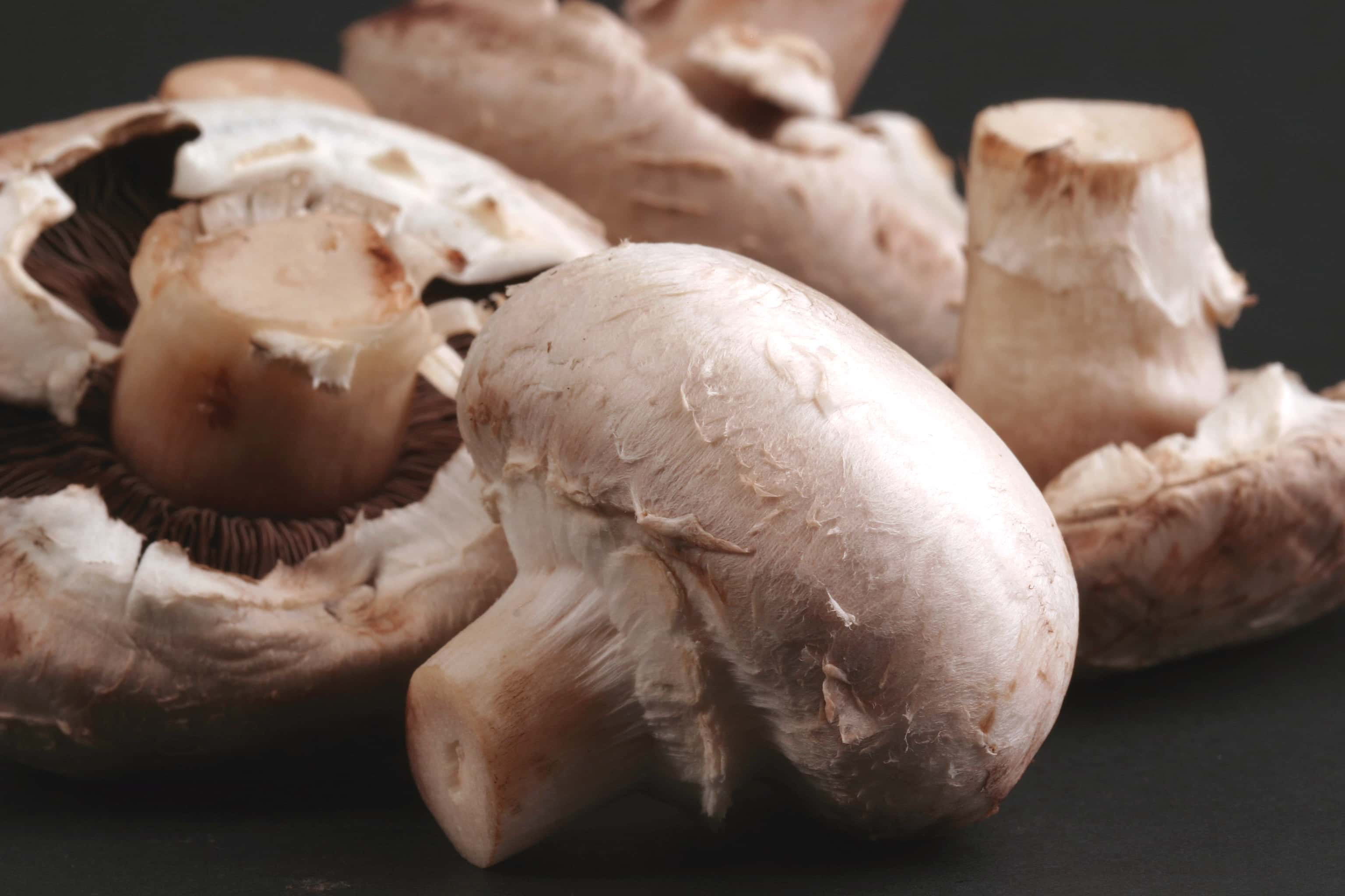 Say Yes to Mushrooms for National Nutrition Month
