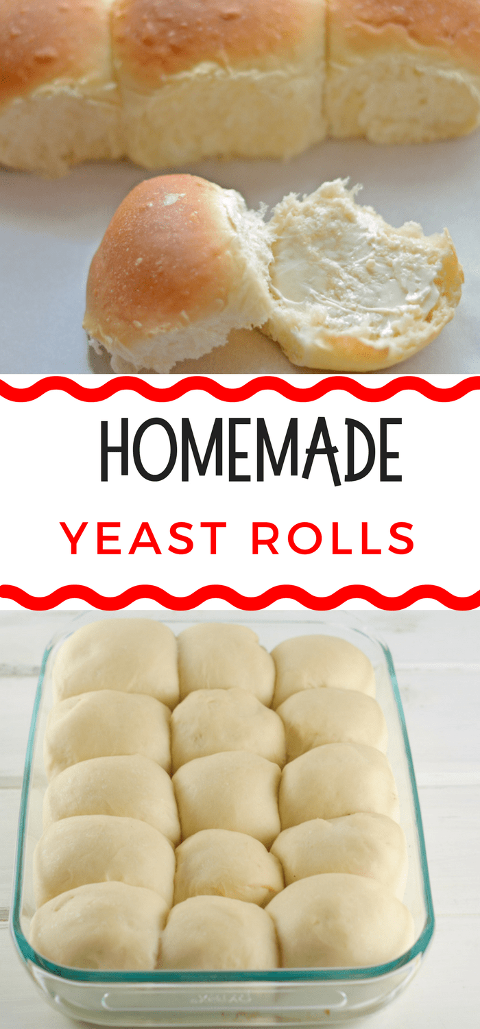 Homemade yeast rolls recipe photos of homemade yeast rolls recipe forumfinder Choice Image