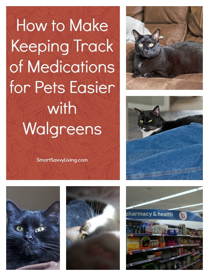 How to Make Keeping Track of Medications for Pets Easier #shop #cbias #WalgreensRx