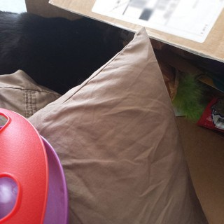 Marvin-in-the-box